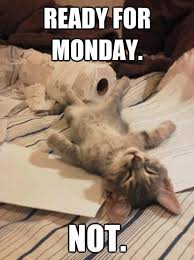 Funny Monday Morning Quotes Amazing Funny Monday Picture Quotes Funny Monday Morning Quotes And The Two