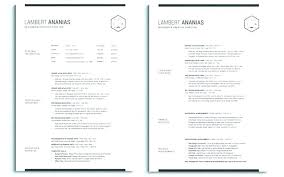 Resume Template Doc Gorgeous Two Page Resume Samples 60 Page Resume Sample One Page Cv Template