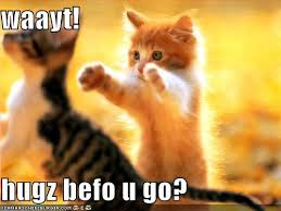 cute kittens quotes for kids. Beautiful Quotes Inside Cute Kittens Quotes For Kids O