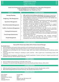 Mba Resume Samples Work Pinterest Sample Resume And Stylish Men