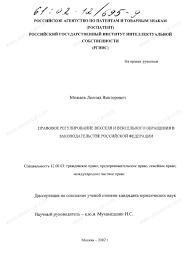 Диссертация на тему Правовое регулирование векселя и вексельного  Диссертация и автореферат на тему Правовое регулирование векселя и вексельного обращения в законодательстве Российской Федерации