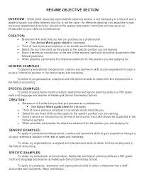 Professional Resume Objective Examples Resume Objective Necessary