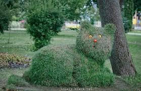 Sculpture végétal  - Page 3 Images?q=tbn:ANd9GcTyvdjiV25b_UGgW48Gorx3JHzEuhXykIIE3fNAgYW7DVkbREfQ