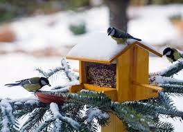 Diy Birdhouse Diy Bird House For Winter Winter Curb Appeal 12 Easy Ideas