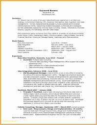 Pages Resume Templates Fascinating How To Write A One Page Resume Template Inspirational Pages Resume