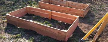 raised garden beds the holy i