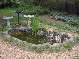 Small Picture 67 cool backyard pond design ideas digsdigs 22 small garden or