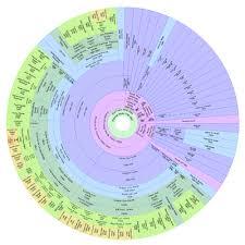 Descendant Fan Chart Colored Descendant Fan Chart Family Genealogy Genealogy