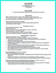 Forensic Accountant Job Description Template Data Analyst Resume