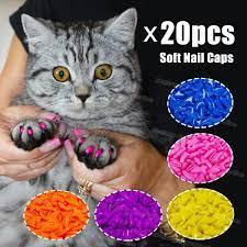 cat fingernail ers macj br