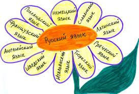 Заимствованные слова и их употребление в русской речи ОКО   book science ru artimage p1126 jpg