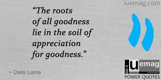 Recognition Quotes Cool 48 Prominent Quotes That Define The Value Of Appreciation
