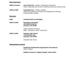 excellent resume how to write summary tags resume how to