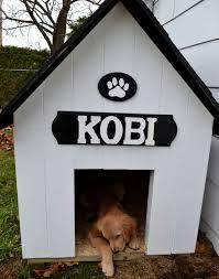 DIY Simple Dog House
