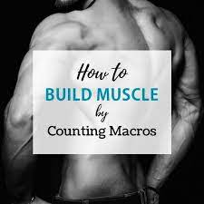 macros for gaining muscle and cutting fat