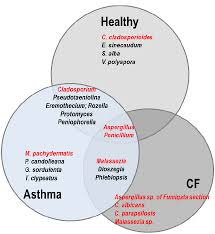 Bacteria And Viruses Venn Diagram Venn Diagram Representing The Comparison Of The Respiratory