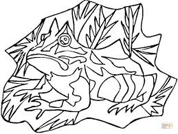 Small Picture Poison Dart Frog coloring page Free Printable Coloring Pages