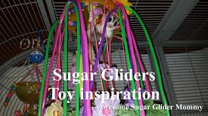 toy inspiration for sugar gliders