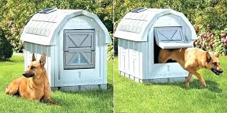 best outdoor dog house outside dog house heater insulated dog house best insulated dog house heated best outdoor dog house