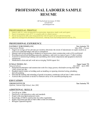 Resume Professional Summary Example Issue Laborer Profile 1 Cruzrich
