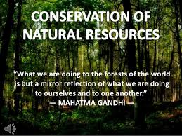 "conservation of natural resources  ""what we are doing to the forests of the world is but a mirror reflection """