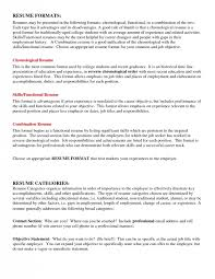 Resume Summary Examples For College Students Professional Resume