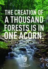 emerson nature essay topics docoments ojazlink ralph waldo emerson nature essay