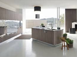 Small Picture kitchen cabinets Modern Kitchen With Extended Bar Modern Eat