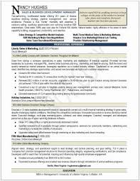 Business Plan In Pdf Simple Manufacturing Business Plan Template Pdf New Business Plan Home