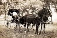 Image result for pre era of motors transport reliant on horses