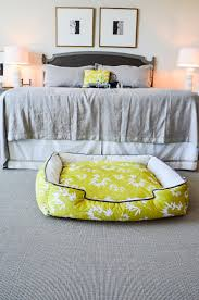 sd blog   shades of dog matching modern dog beds and throw