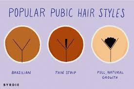 Pubic Hair Growth Chart What Are The Most Popular Pubic Hair Styles