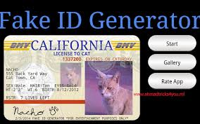 Fake Identity Identity Card Generator Card Fake Generator