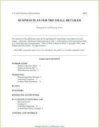 It Executive Summary Template Executive Summary Template Word Doc