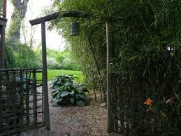 Small Picture Designing with Bamboo Gallery Garden Design