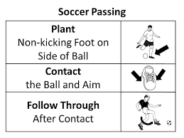 Soccer Rotation Chart Beekman Pe Soccer