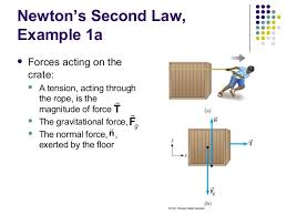 Laws Of Motion Examples Second Law Of Motion Examples Magdalene Project Org
