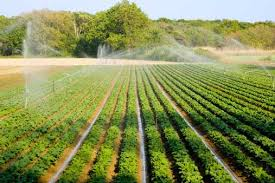 you can adopt any of these ingenious soil conservation methods irrigation