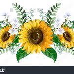 Maryanne Emery (bcrox01) - Profile   Pinterest