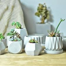 cement pots for plants or trinkets