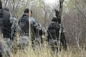 Resultado de imagem para policia militar em perseguição na caatinga