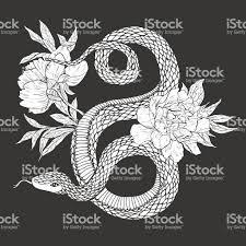 змей и цветы тату искусствараскрасками стоковая векторная графика
