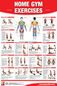 23 Disclosed York Home Gym Exercise Chart