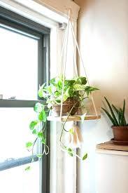 indoor wall plant holders indoor plant hanger stand indoor hanging plant stand terrarium design indoor hanging indoor wall plant holders indoor hanging