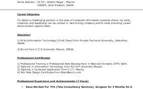 Resume Examples Of Perfect Resumes Amazing Write My Resume