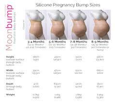 Pregnancy Bump Chart 31 Best Bump Progression Images