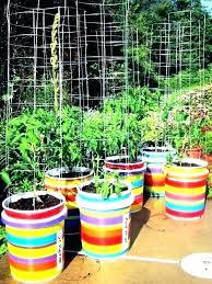 5 gallon bucket garden self watering 5 gallon bucket garden trees with plans 5 gallon planter