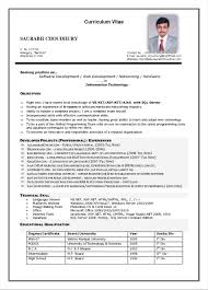 Nice Curriculum Vitae Medical Doctor Example Component