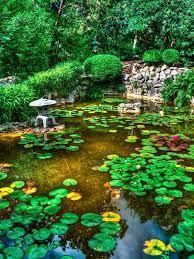 Zen Garden iPhone Wallpapers [1000x1506 ...