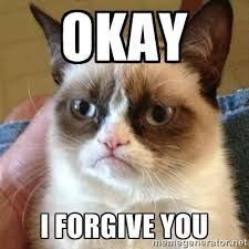 Okay I Forgive you - Grumpy Cat | Meme Generator via Relatably.com